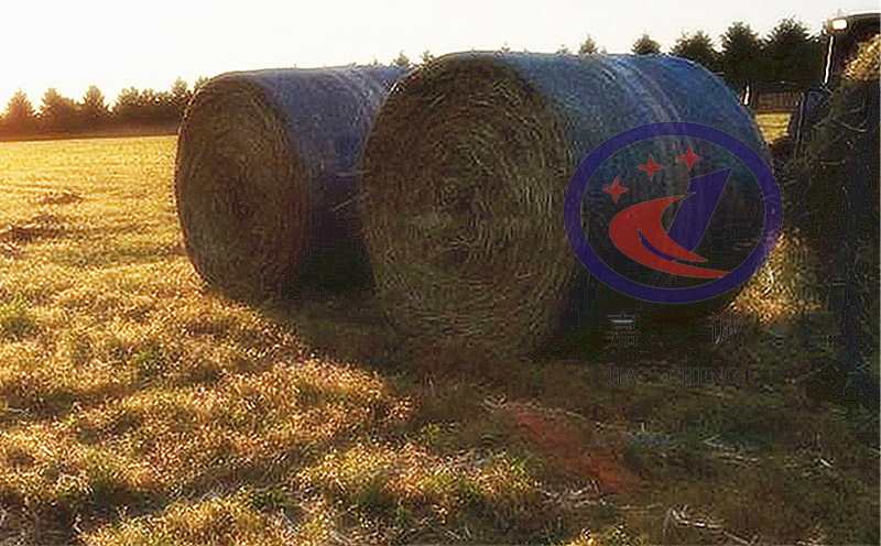 Export red bale netwrap